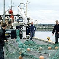 EU ministers agree Baltic fish quotas