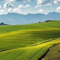 CAP not halting biodiversity loss in farming: EU auditors