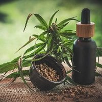 EU Court rules against French ban on marketing CBD
