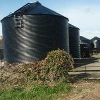 Coronavirus: new measures to help EU farmers