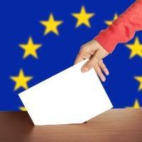 Euro-elections shake up Europe's political establishment