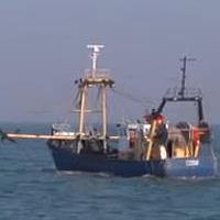 EU provisionally agrees to reduce Baltic fishing fleet