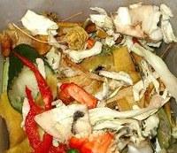 MEPs call on EU to tackle food waste mountain