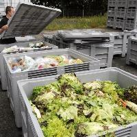 MEPs call for blitz on EU food waste mountain