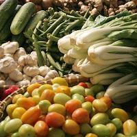 EU healthy eating scheme for schools under way