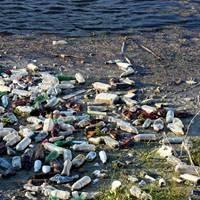 EU agrees single-use plastics ban to reduce marine litter