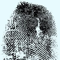 MEPs demand data protection guarantees for fingerprint exchange with UK