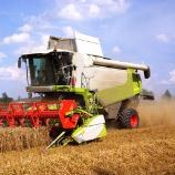 EU agrees to allow traces of GM crops in EU animal feed
